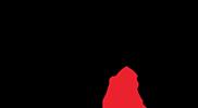L'evento cinofilo di Varese