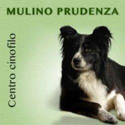 centro-mulino-prudenza_300x300