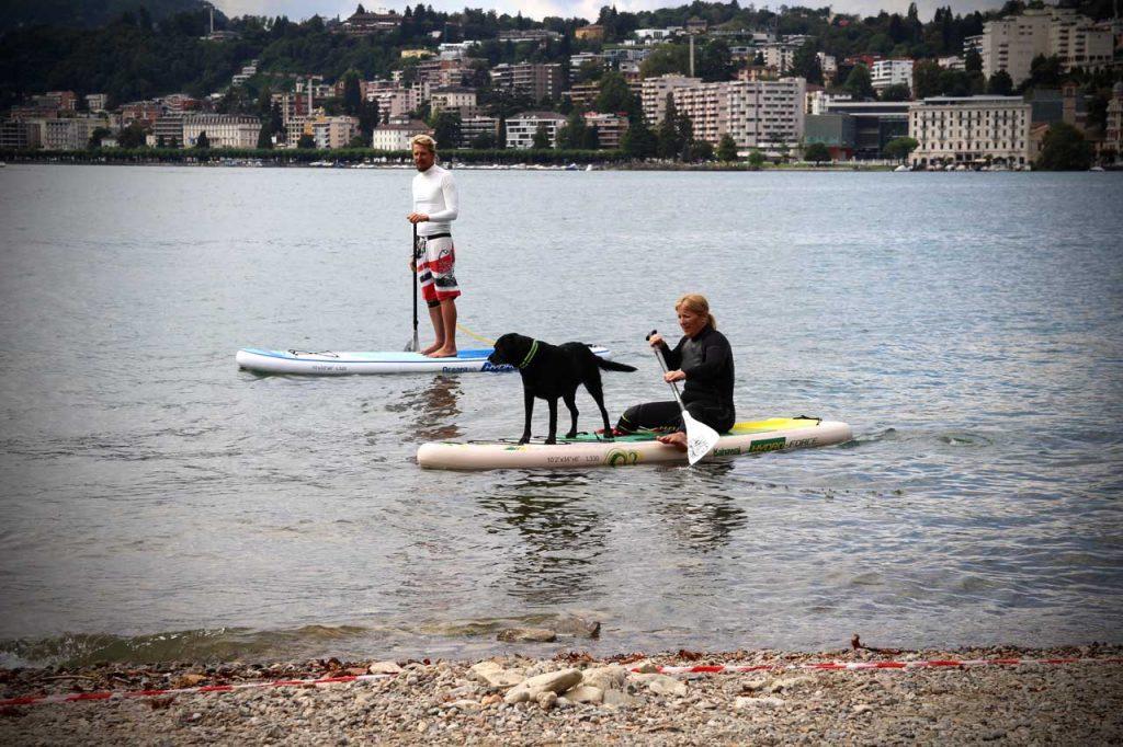 sup-dog-2_1280x853